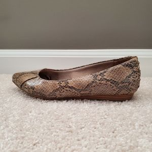 Brown Snakeskin Flats (7W)